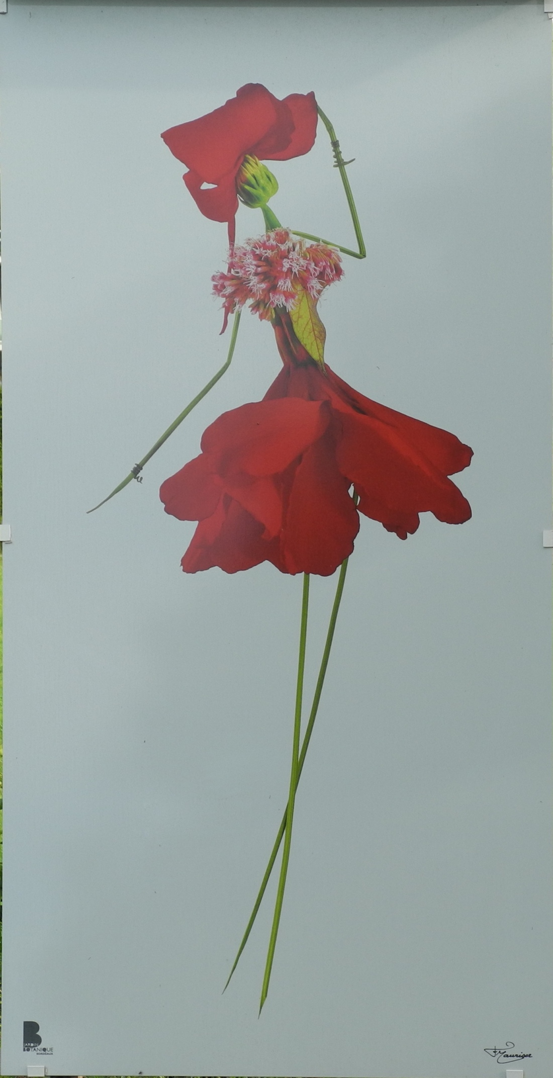 Peinture 4 bis